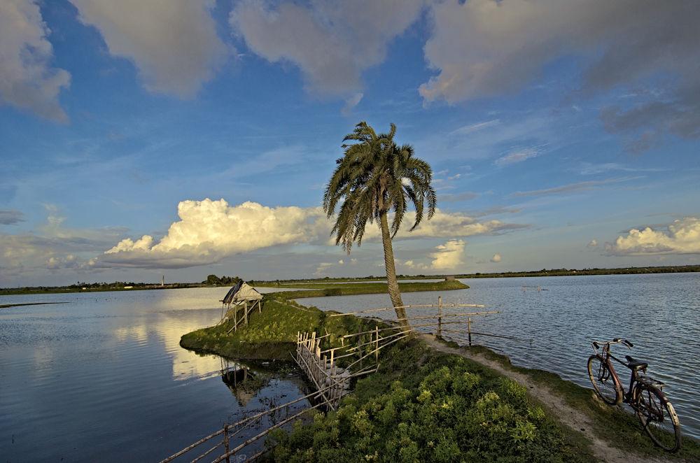 Photo in Landscape #kolkata #rural #island #landscape #india #waterscape