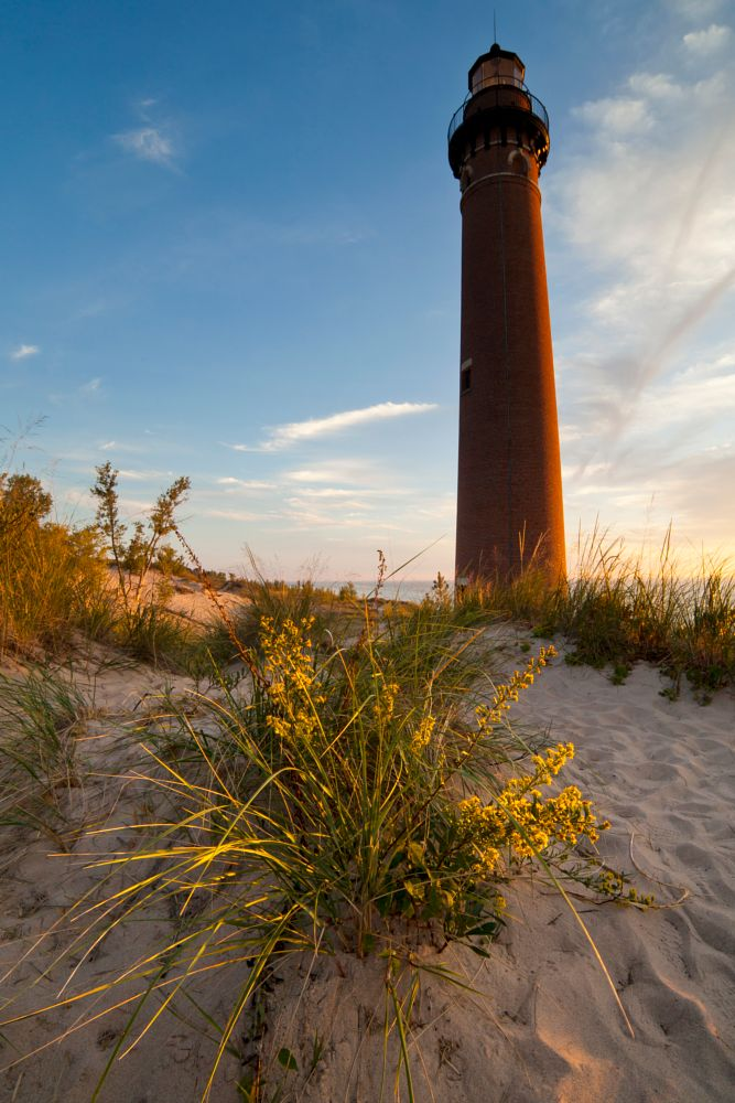 Photo in Landscape #lighthouse #flowers #sand #plant #bloom #michigan #oceana county #sunlight #wide angle