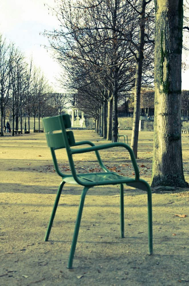 Photo in Landscape #paris #tuileries #winter #seat