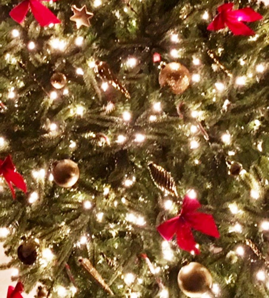 Photo in Random #light #christmas #peace