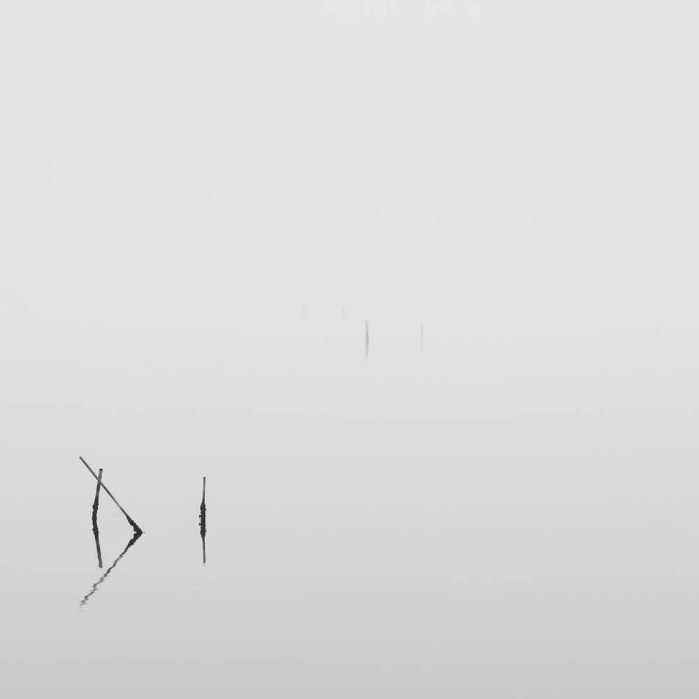 Photo in Black and White #seascape #minimal #long exposure #monochrome #sacca di scardovari #polesine #scheme