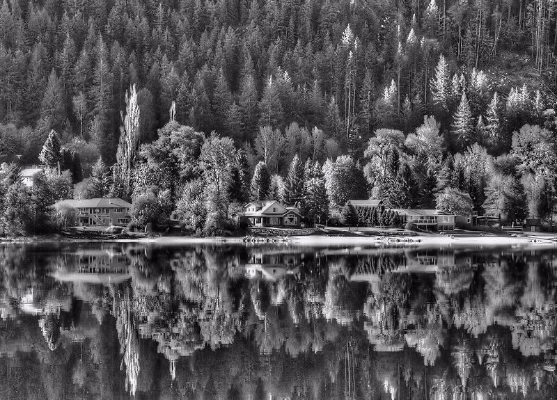 Photo in Black and White #b&w #lake #water