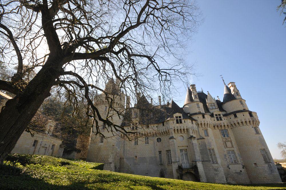 Photo in Architecture #castle #fairy #tale #legend #history #renaissance #heritage