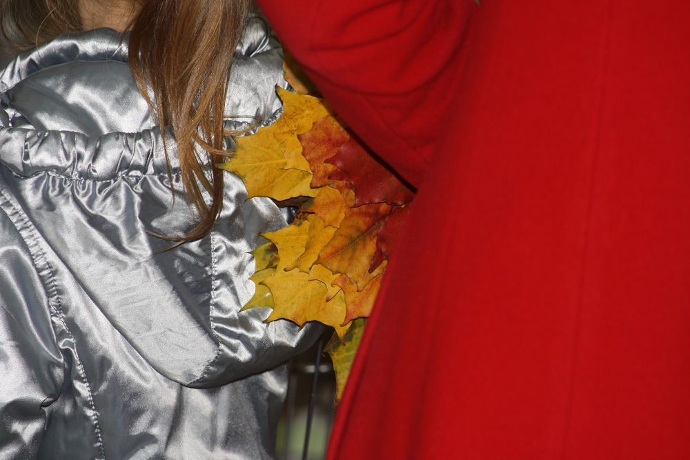 Photo in Random #ypa2013 #ypa2014 #leaves #red #yellow
