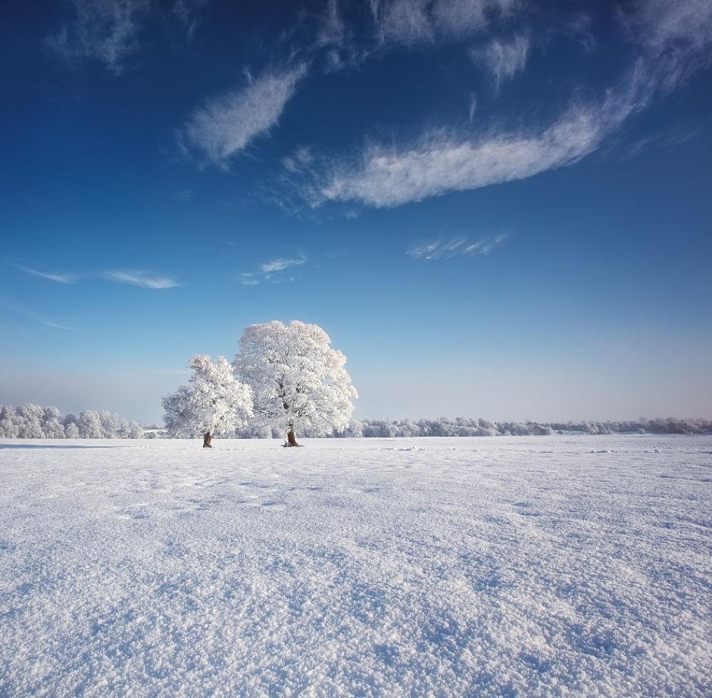 Photo in Landscape #winter #ireland #trim #snow #marius kasteckas