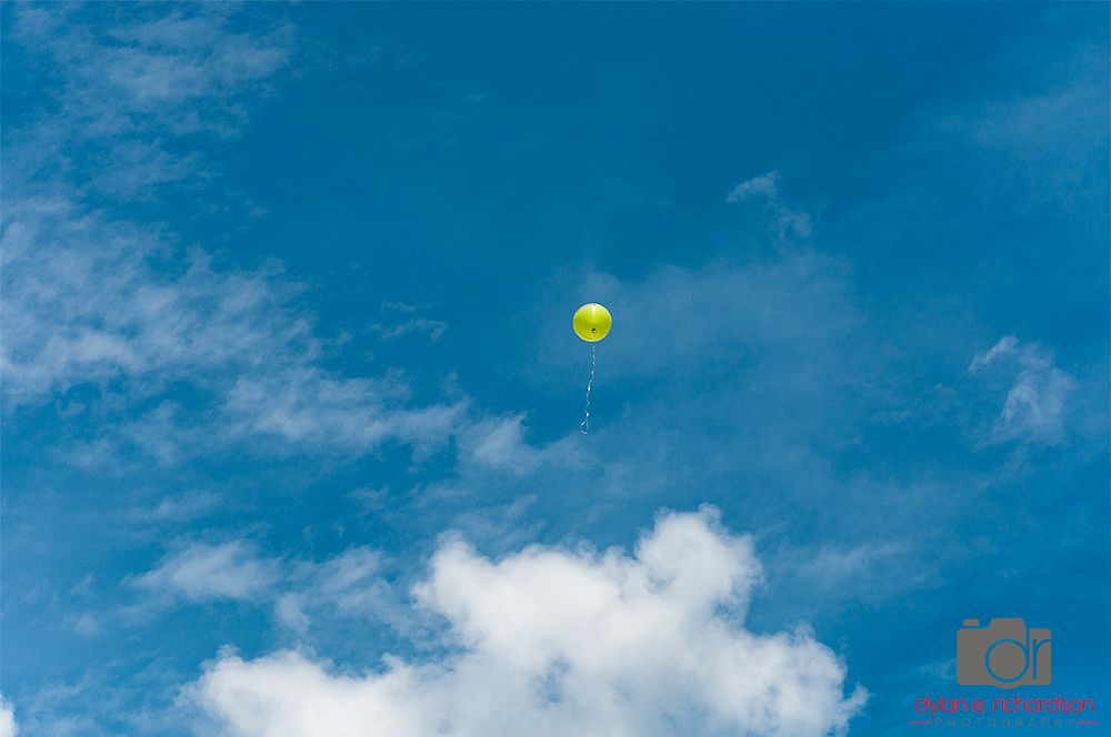 Photo in Journalism #spring #color #balloon #outdoors #yellow #nature