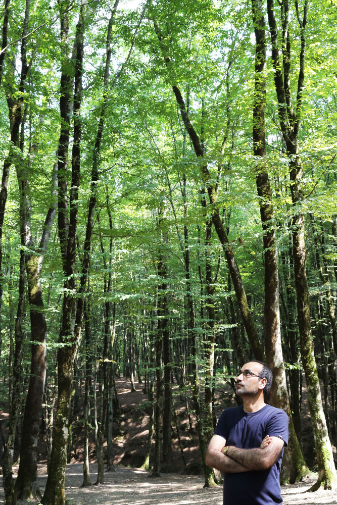 Photo in Nature #woodland