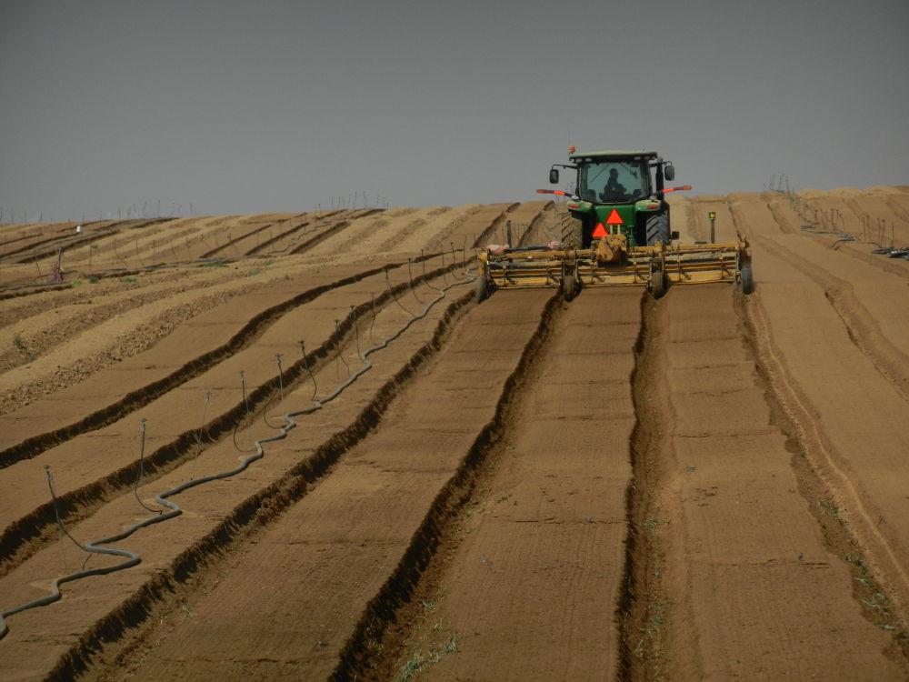 Photo in Nature #ypa2013 #traktor #field