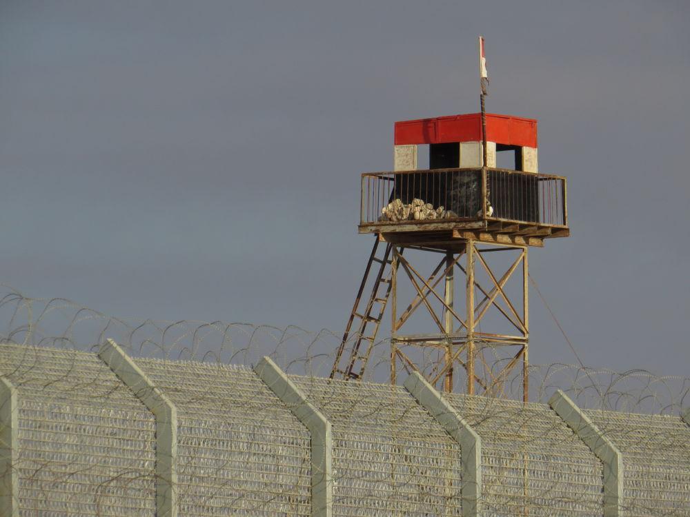 Photo in Random #border #guard #egypt #fence #israel #ypa2013
