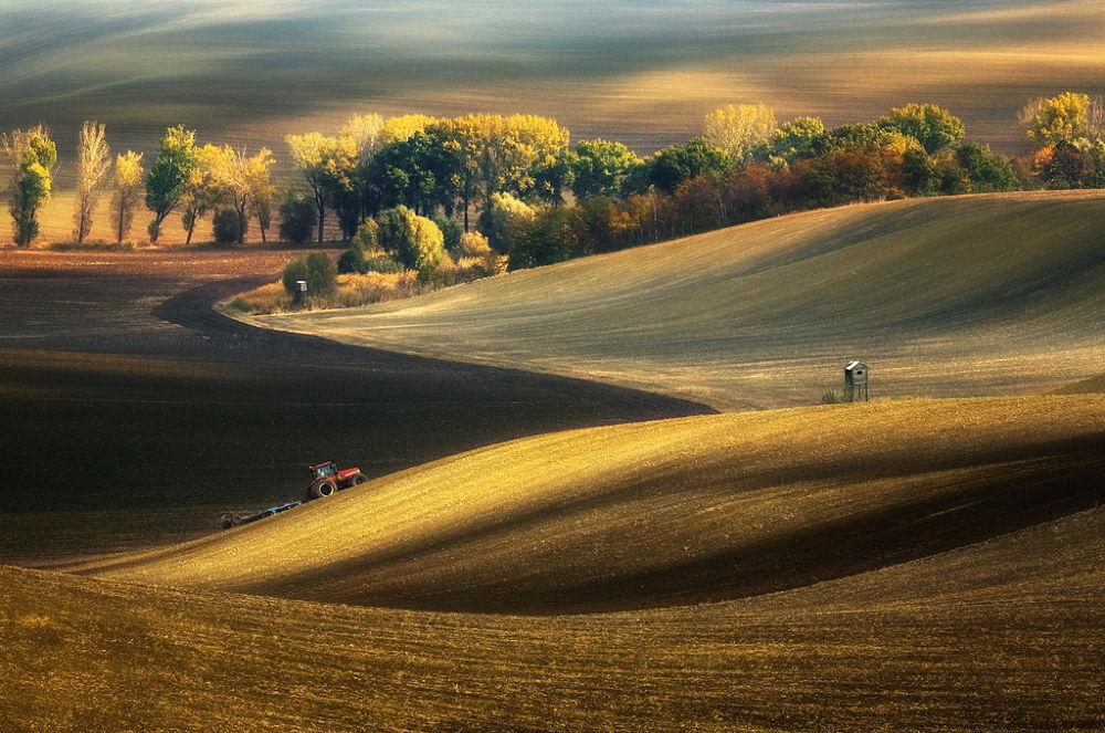 Photo in Landscape