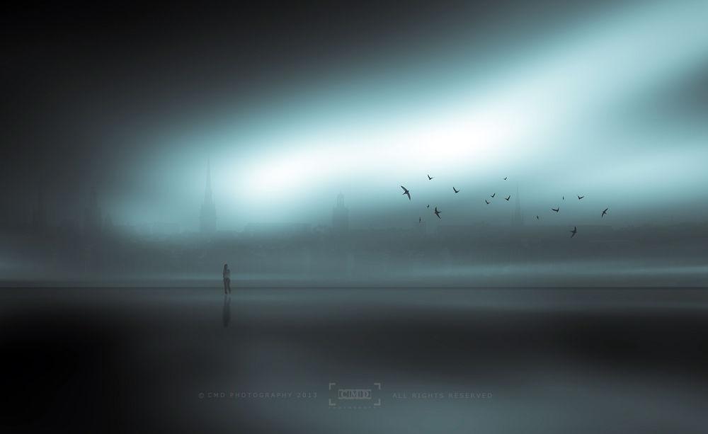 Photo in Fine Art #ypa2013 #town #fog #city #birds #girl #people #evening #art #fine art