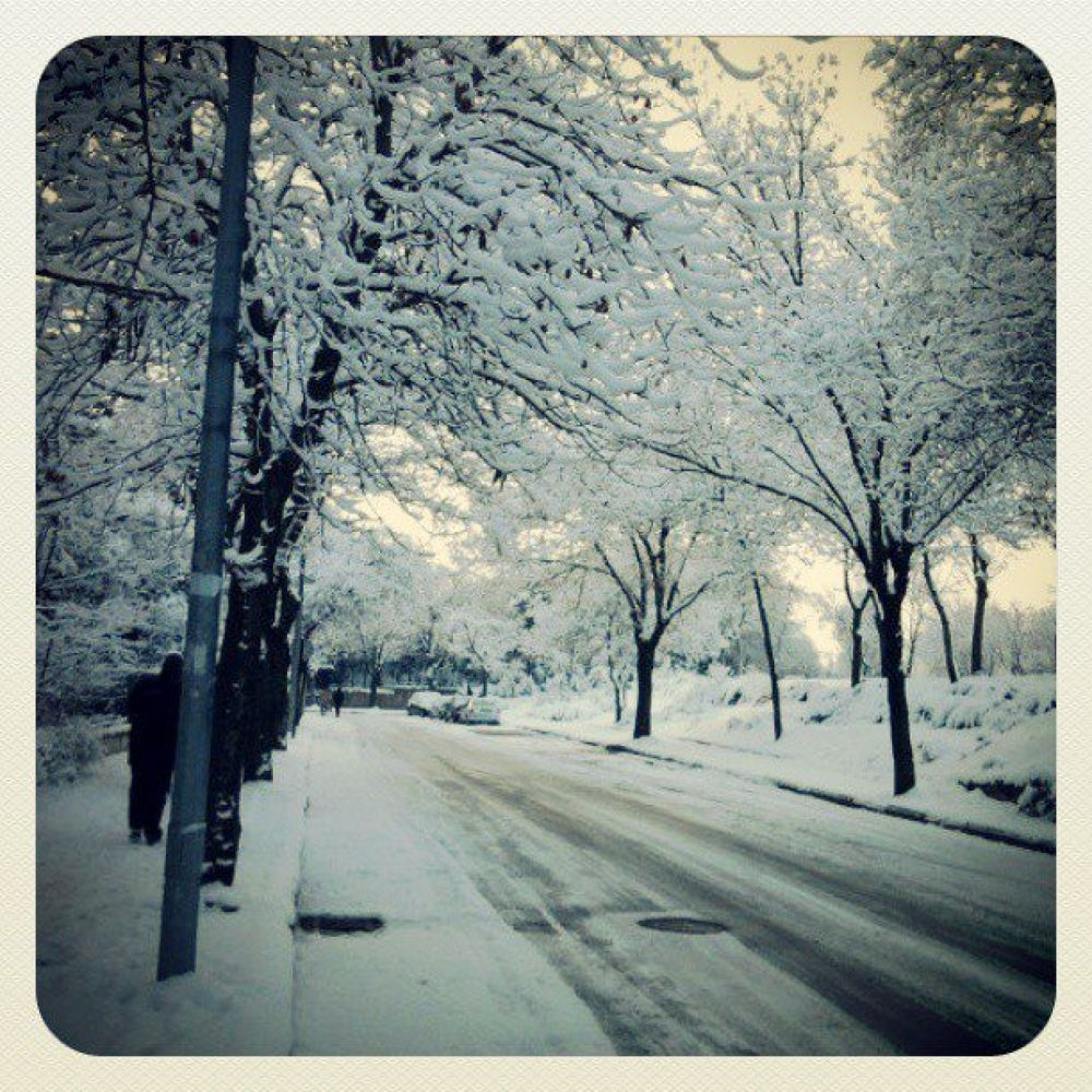 Photo in Random #white #three #snow #cold #canon #nikon #minolta #sony #samsung #500px #facebook #instagram #sexy #orgasm #color #usa #turkey #animal #food