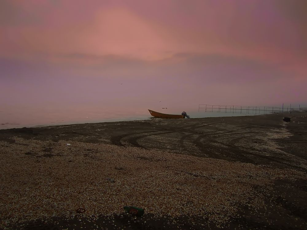 Photo in Sea and Sand #sea #shells #boats
