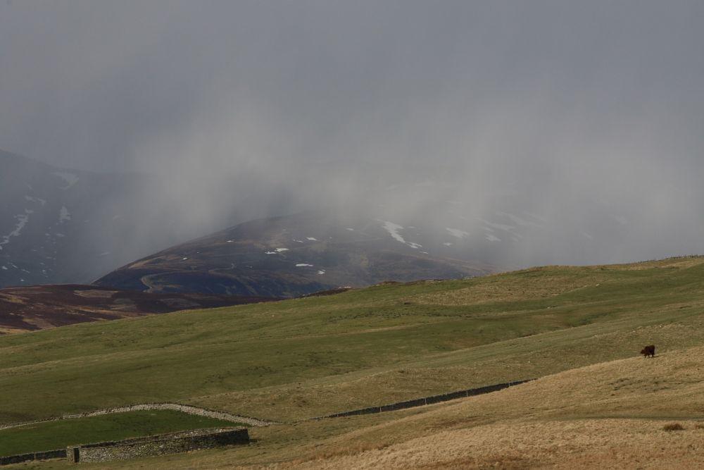 Photo in Landscape #snow shower #moorland #highlands