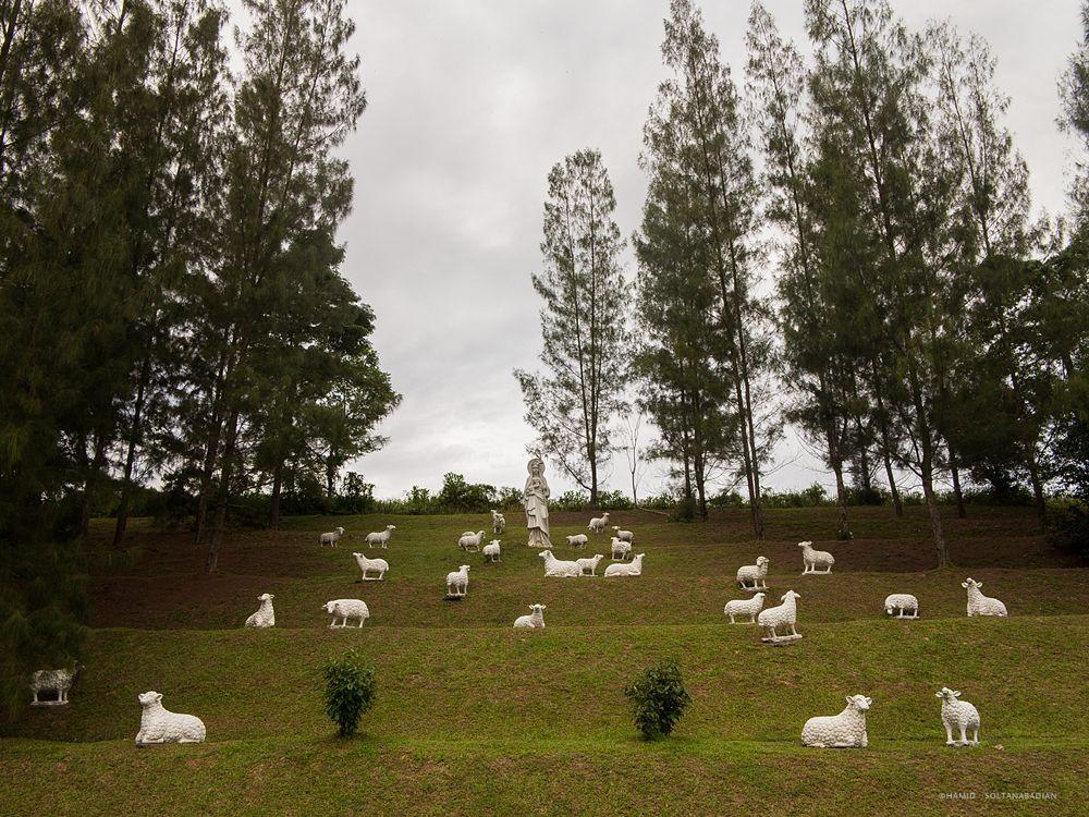 Photo in Travel #malaysia