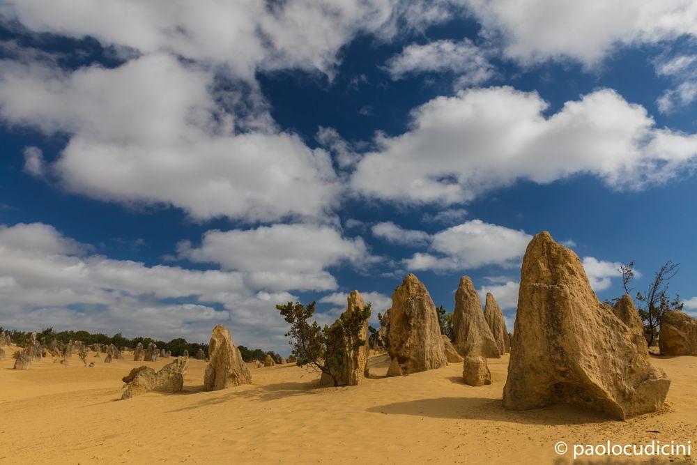 Pinnacles National Park   Nambung  Australia