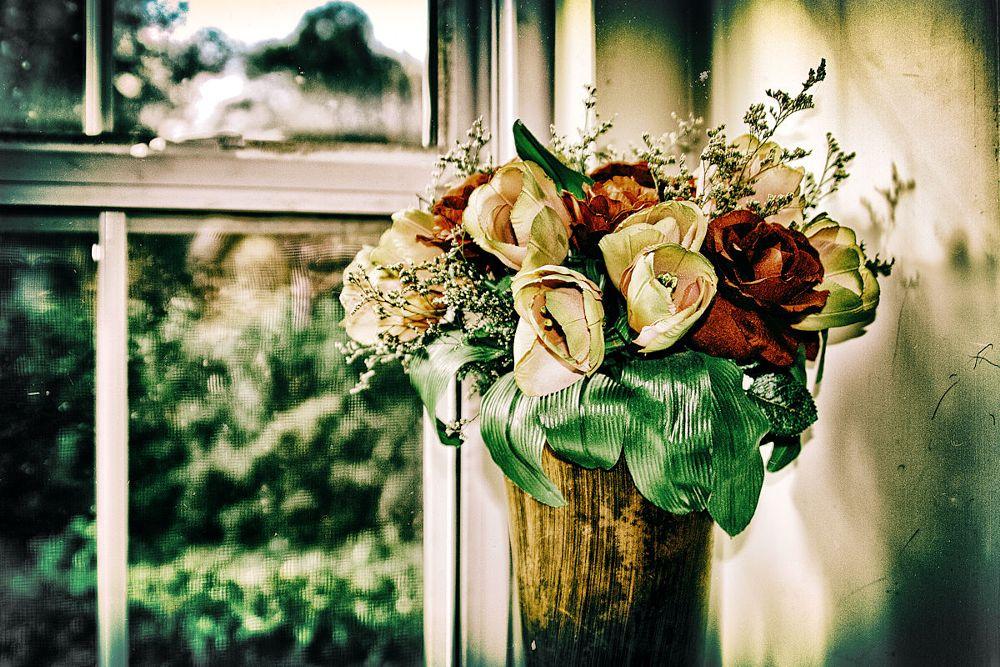 Photo in Interior #indoors #window #flowers #vintage