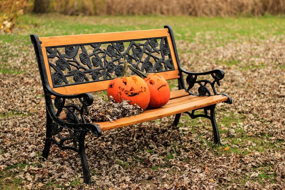 Photo in Still Life #lanscape #pumpkin #bench #leafs #fall #halloween