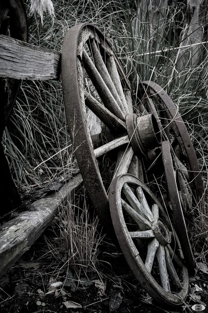 Photo in Vehicle #vehicle #wheel #wood #old #urbex #lost #rh-photography #grass