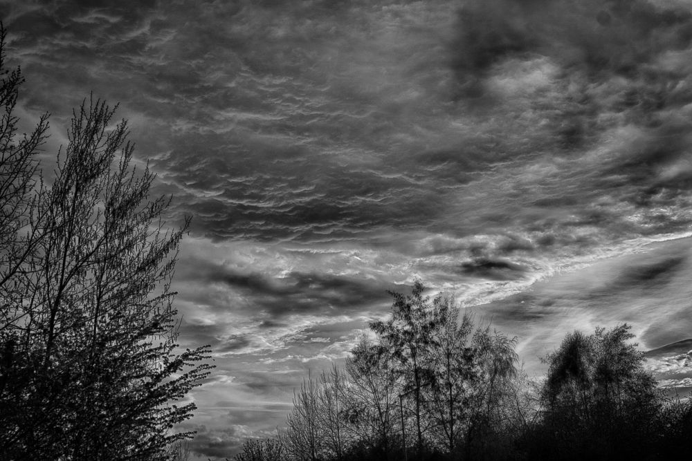 Photo in Black and White #abstract #sky #storm #spring