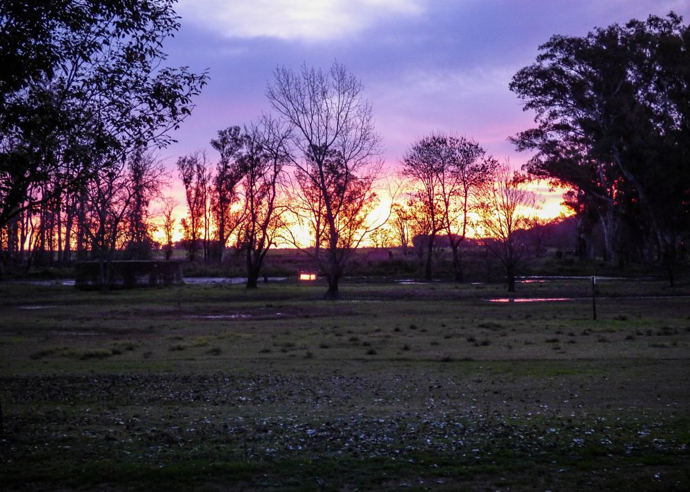Photo in Rural #inriville #cordoba #argentina #lumix #sunset #rural