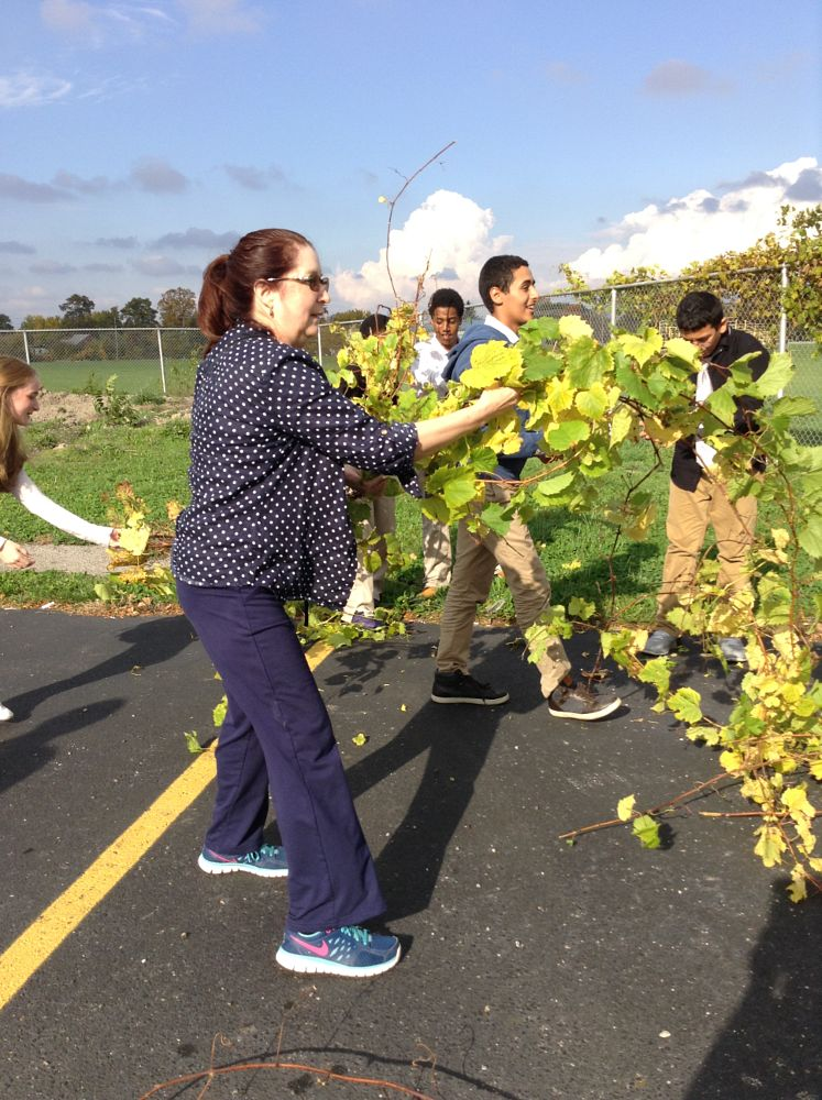 Photo in People #nature #grapevine #pulling the vine