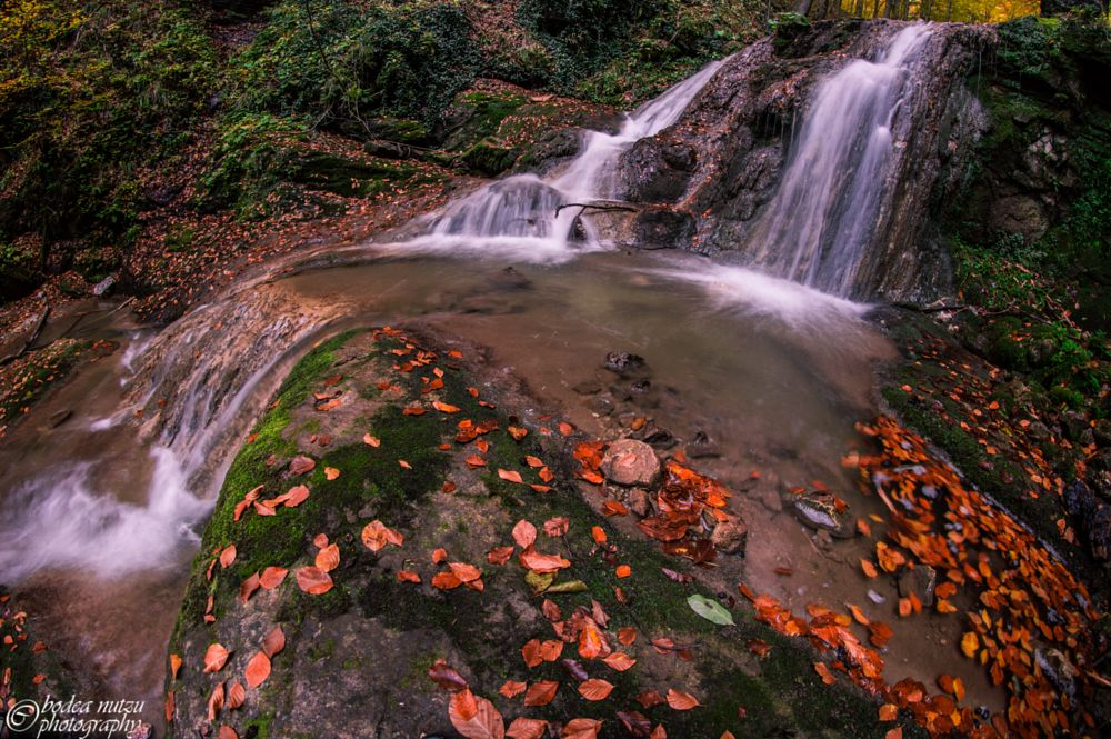 Photo in Nature #autumn #fall #waterfall #leaves #color #red #forest