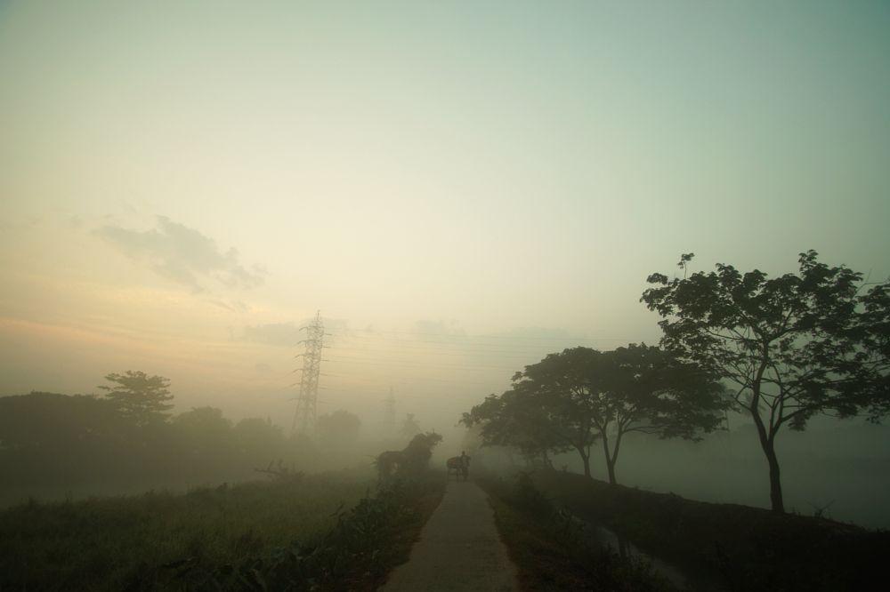 Photo in Landscape #landscape #nature #beauty #sunrise #mist #morning #people #work #life #colors #lights #trees #lake #composition