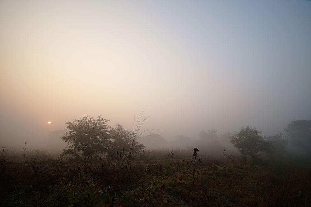 Photo in Landscape #nature #mist #foggy #colors #lights #sunrise #sun #travel #composition #trees #forest #village #landscape