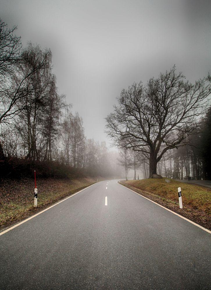Photo in Nature #roadfogwintercanonbayern