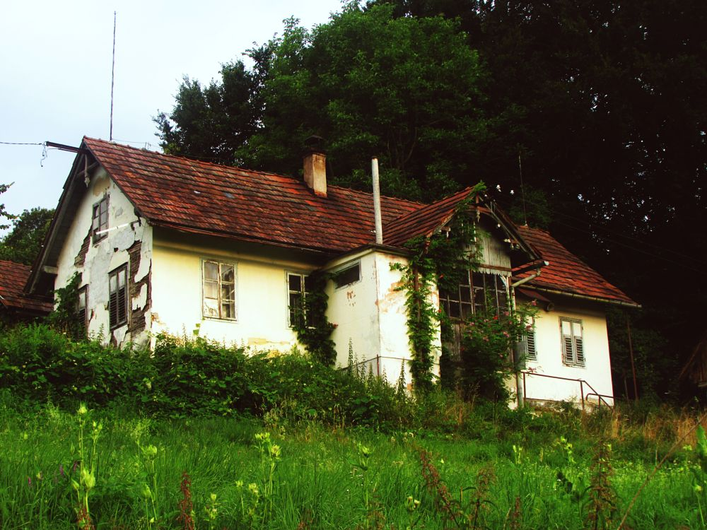 Photo in Architecture #abandoned #house #nature