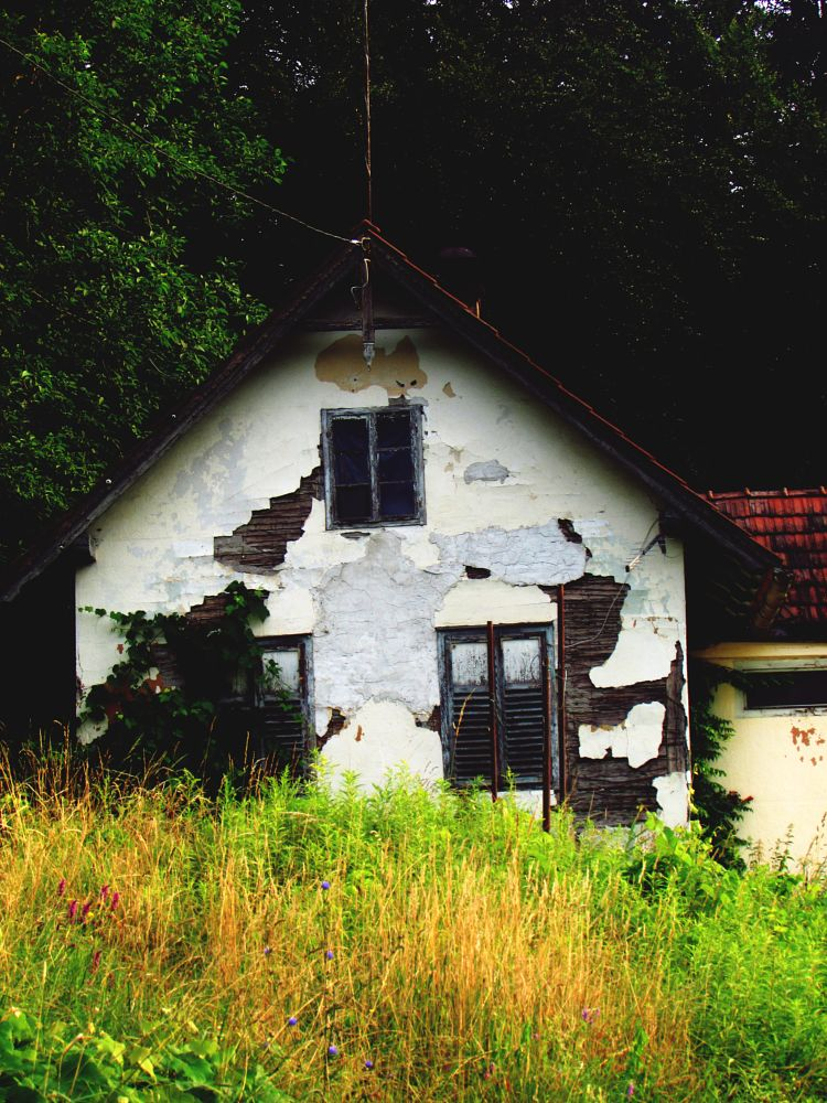 Photo in Architecture #house #abandoned #nature