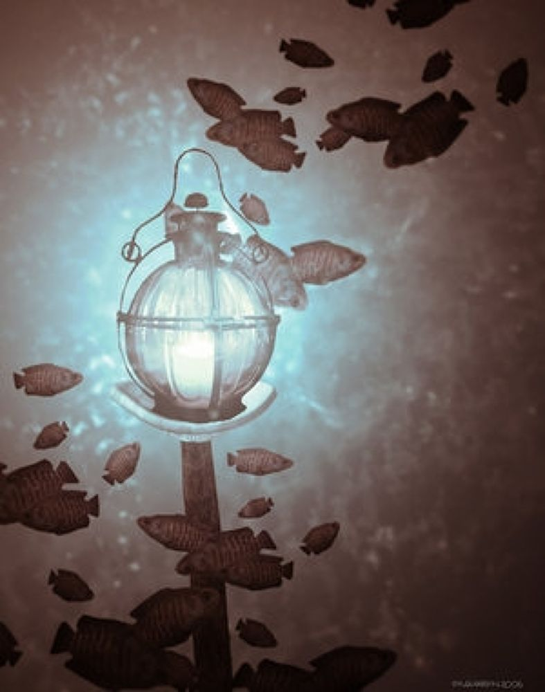 Photo in Random #(original #artwork #cm #gleeson) #deep #light