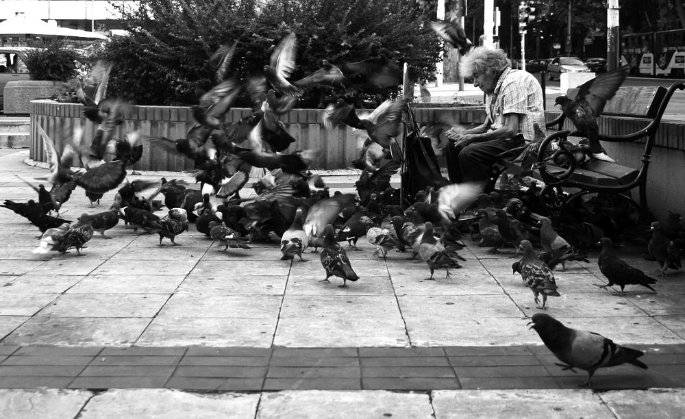 Photo in Journalism #poverty #old #lady #city #food #pigeons #belgrade #serbia