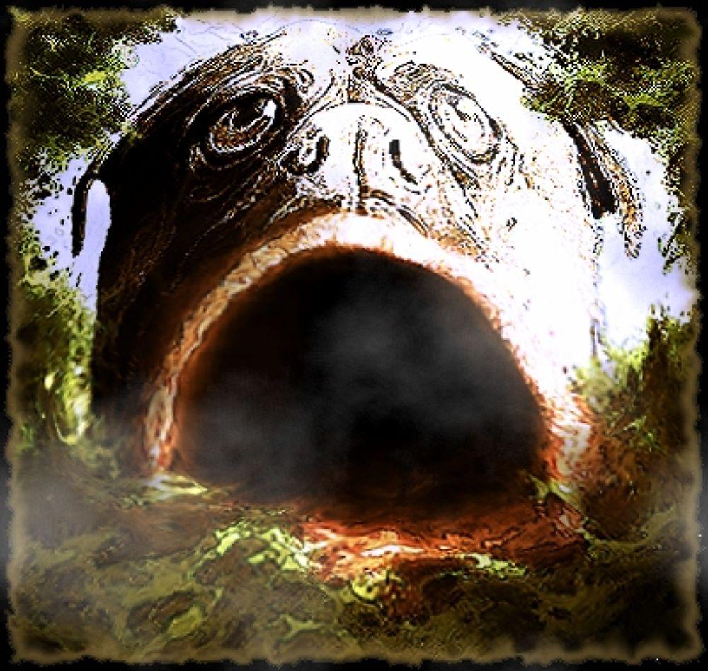 Photo in Random #(original #artwork #cm #gleeson) #dogway