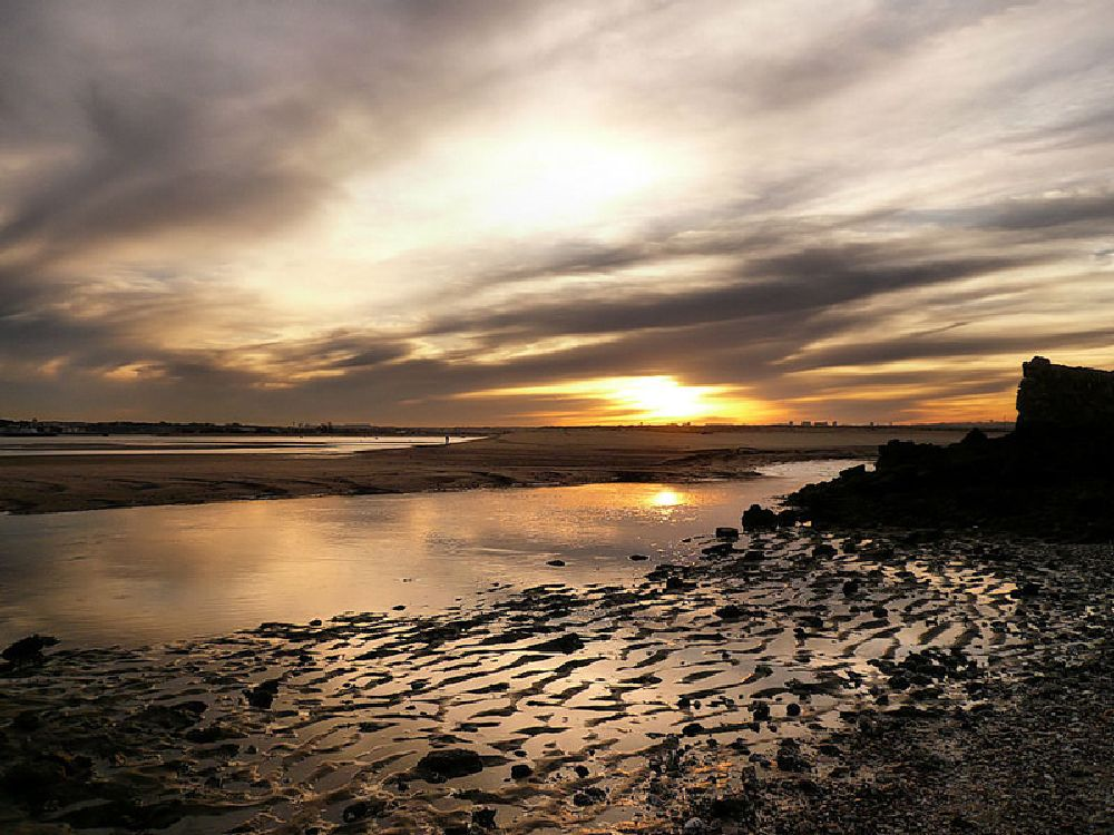 Photo in Landscape #river #tagus #sunset #water #low tide