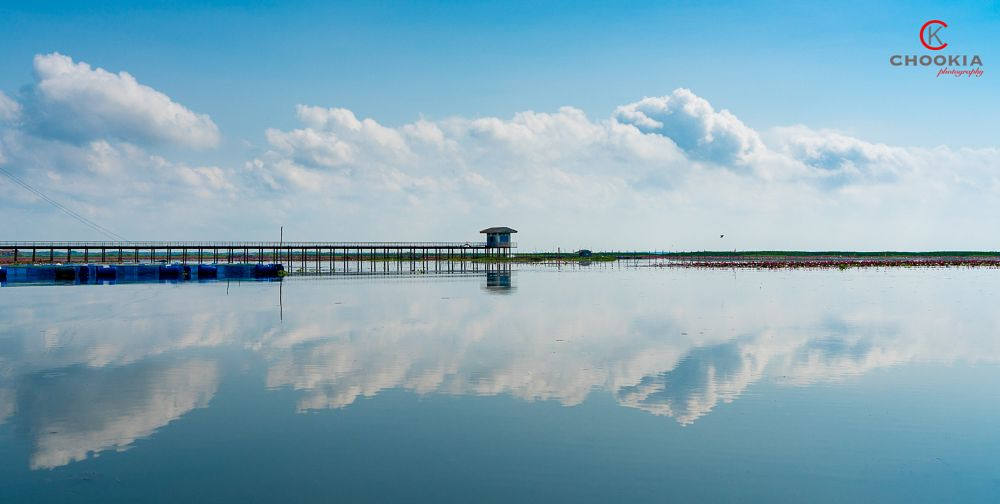 Photo in Landscape #reflection #phatthalung #thailand #sony a7rii #zeiss 24-240mm #sunny day #travel #lake #lakescape #landscape