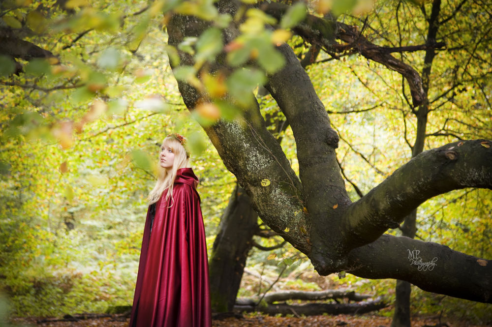 Photo in Portrait #fairytale forest #fairytale #forest #enchanted #brothers grimm #red cape #autumn #fall