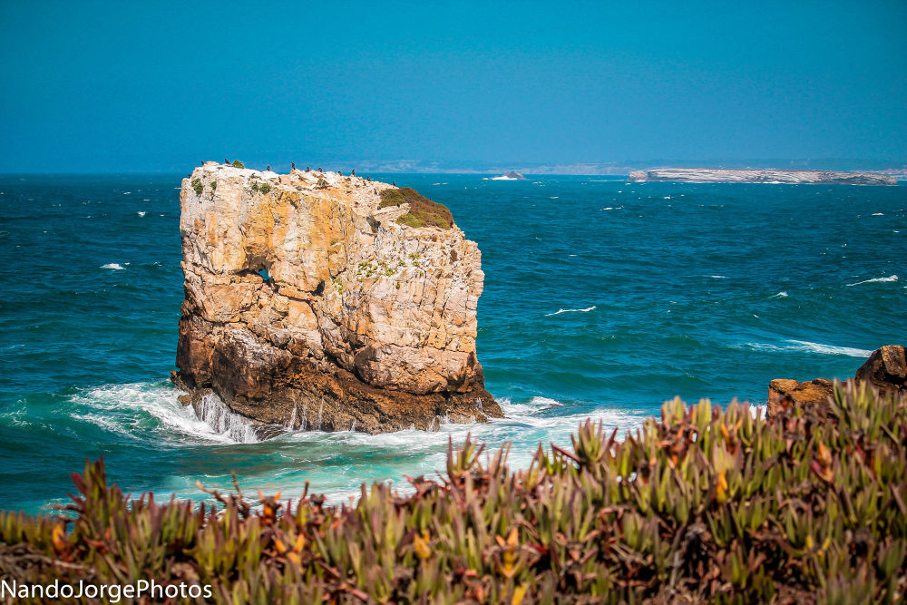 Photo in Travel #peniche #portugal #ypa2013