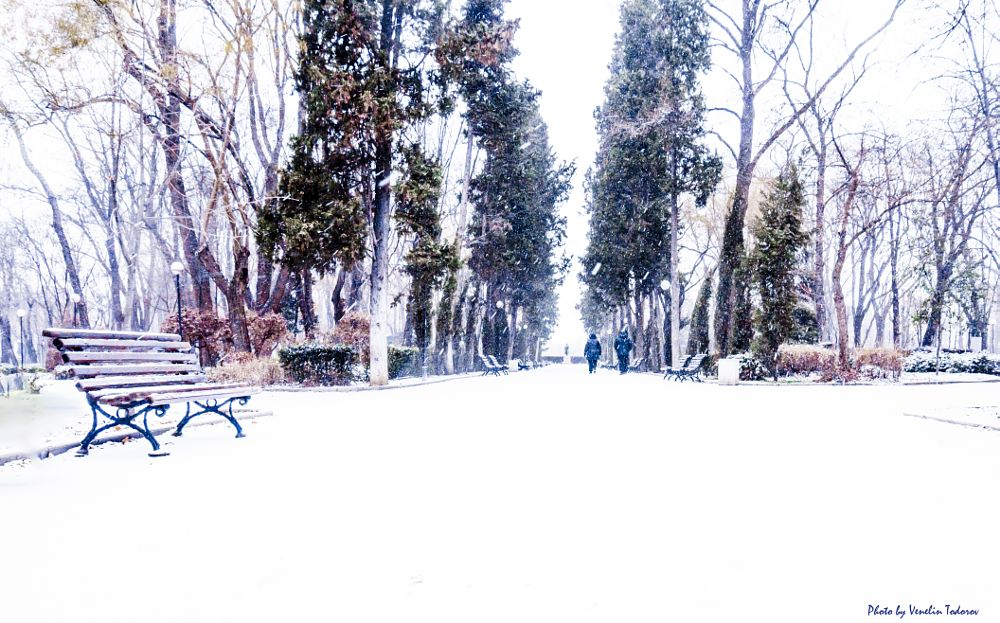 Photo in Cityscape #snow #park #sea #first #burgas