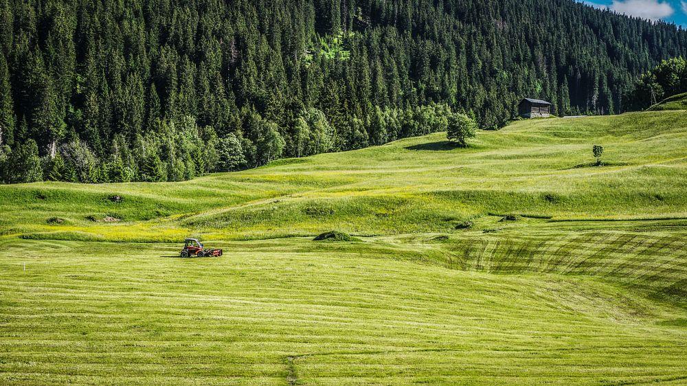 Photo in Landscape #fields #tractor #forest #green