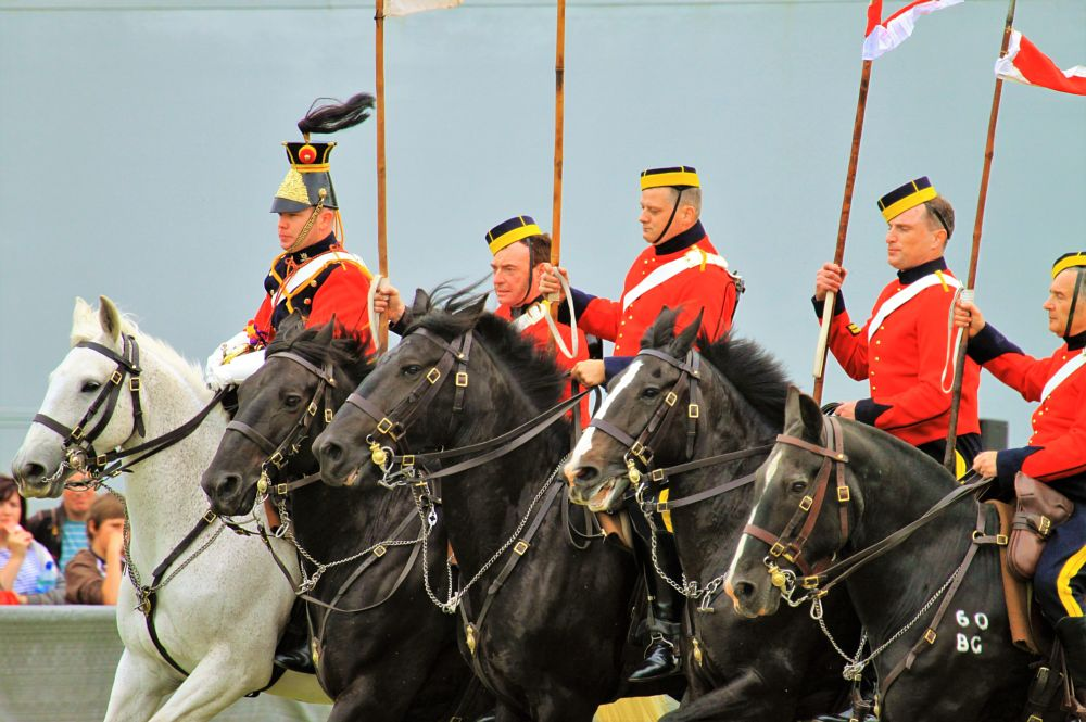 Photo in Animal #horses #riders #uniforms #lancers