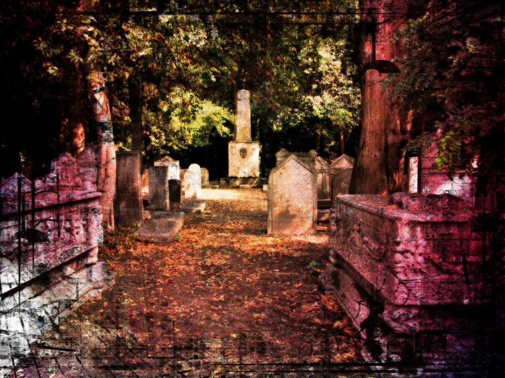 Photo in Random #cemetary #ancient #lido #italy