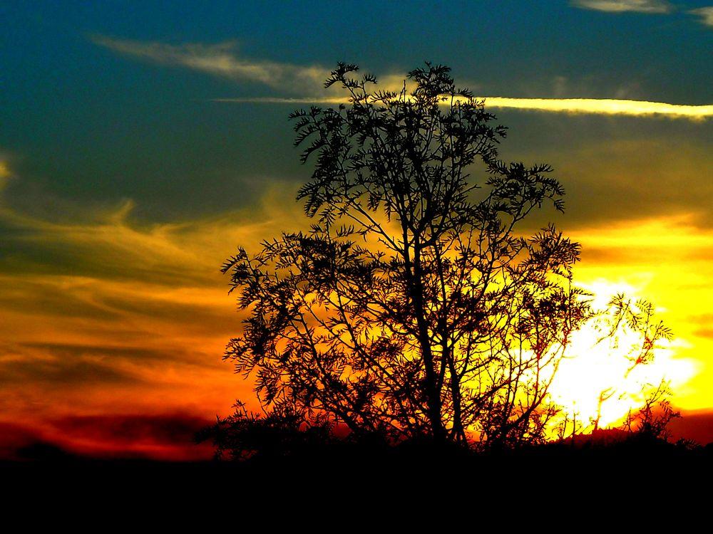 Photo in Landscape #extra ordinary sunset 3 #bitez #my balcony #bodrum #mugla #turkey #landscape #sunset