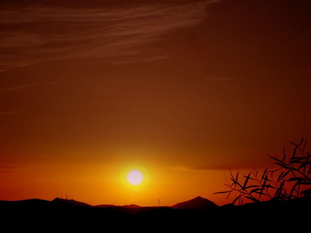 Photo in Landscape #good night from bodrum #bitez #my garden #bodrum #sunset