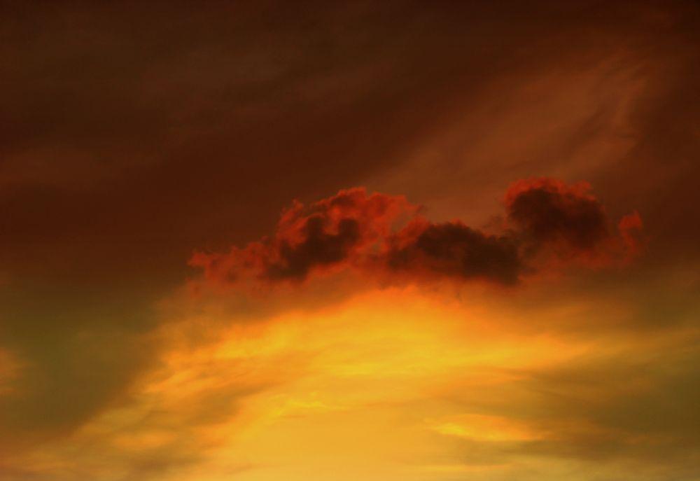 Photo in Landscape #the little one #sunset #my balcony #bitez #bodrum #turkey