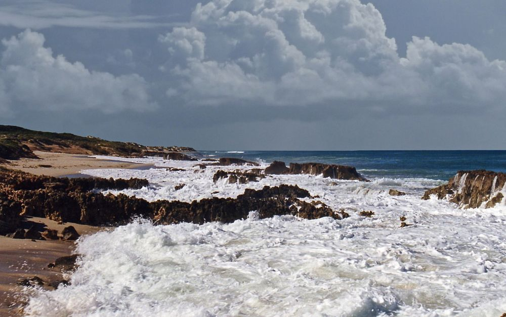 Photo in Sea and Sand #sea and sand #ocean #random