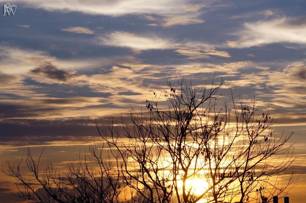 Photo in Random #silhouette #sunset #cloud #sky #sun