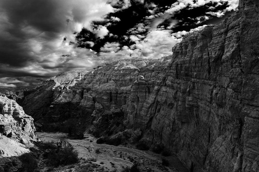 Photo in Black and White #landscape