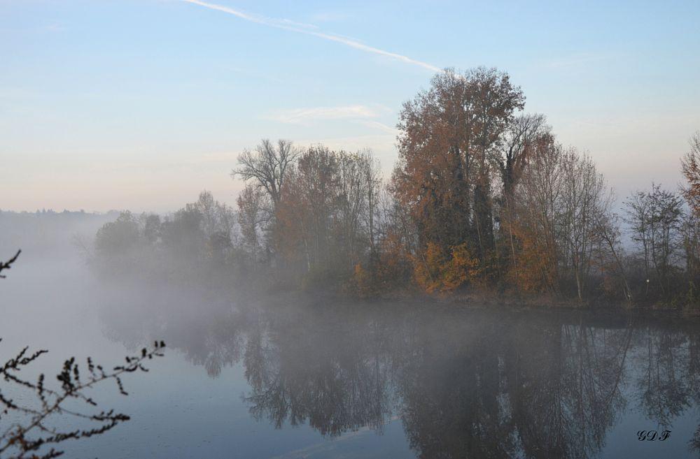 Photo in Random #autunno #fiume #nebbia